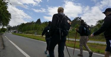 Dia 4 Camino Obradoiro Dani Masso (13)