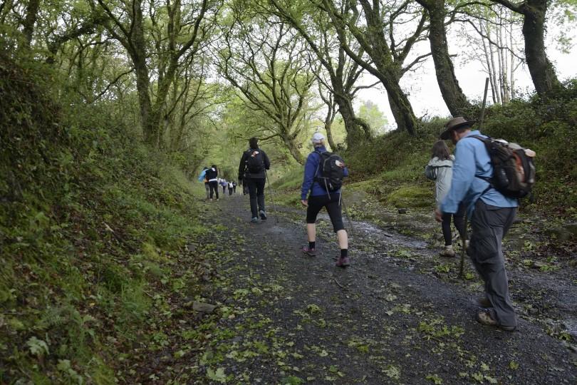 Dia 4 Camino Obradoiro Dani Masso (6)