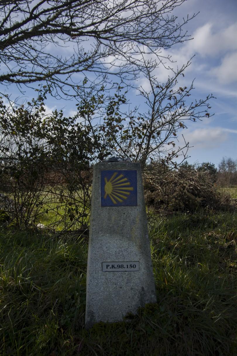 Etapa I   Camino II (13)