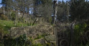 Etapa II Camino Acaba en Obradoiro II      Dani Masso Photo (18)