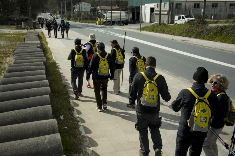 Etapa III Camino Acaba en Obradoiro II      Dani Masso Photo (17)