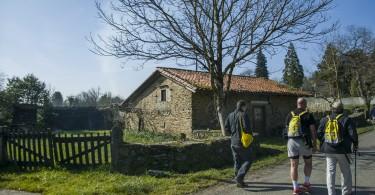 Etapa IV Camino Acaba en Obradoiro II      Dani Masso Photo (5)