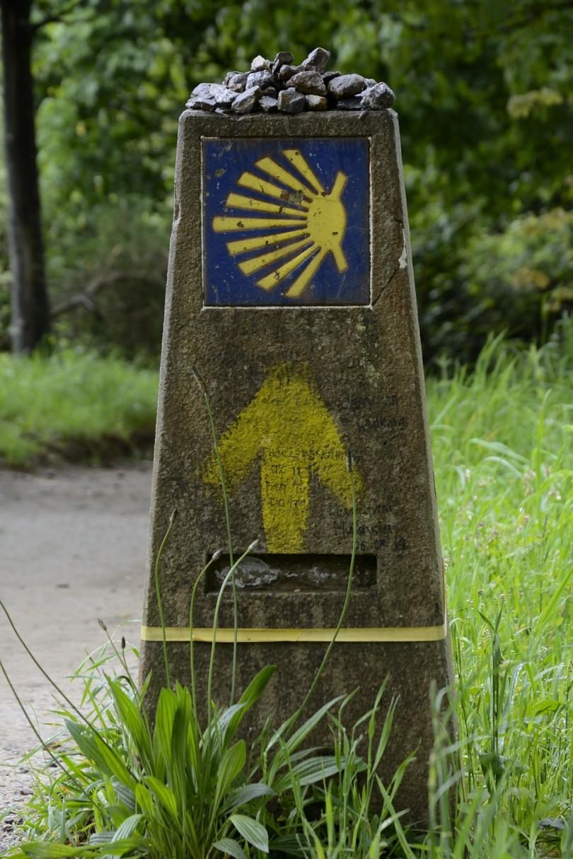 Etapa5 Camino Obradoiro Dani Masso (8)